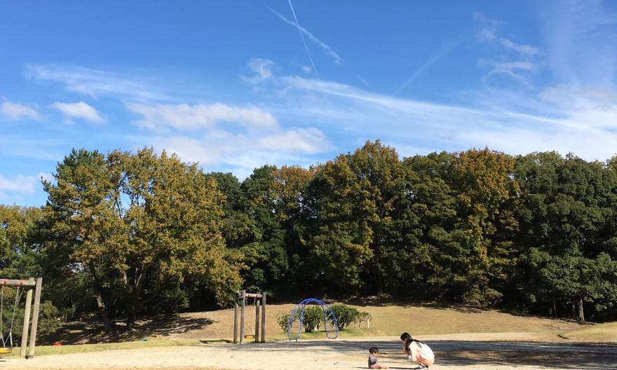 森と親子と飛行機雲 in 森林公園