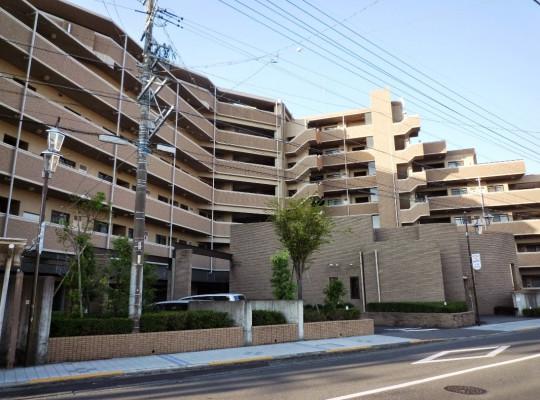 分譲マンションから一戸建てに買い替えされる方が増えています。